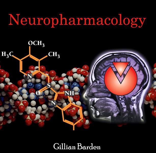 Best Natural Brain Stimulants